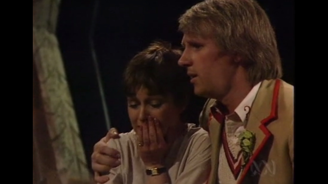 Piąty Doktor pociesza Tegan